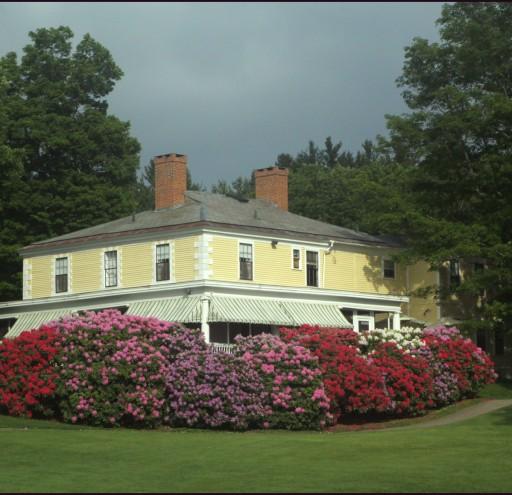 Hooper Golf Course Rhodie