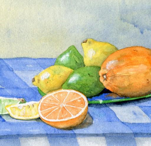Still life orange lemons limes