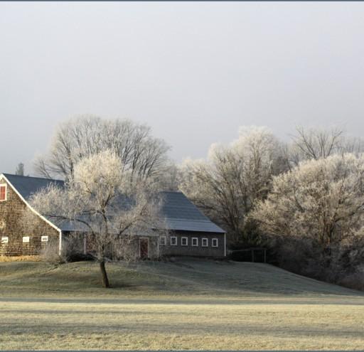 Whiton's Frosty